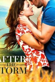 After the Storm (2019) Watch Free 123Movie Online Full HD Stream